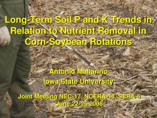Long-Term Soil P and K Trends in Relation to Nutrient Removal in Corn-Soybean Rotations