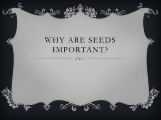 Why are seeds important?