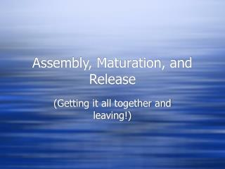 Assembly, Maturation, and Release