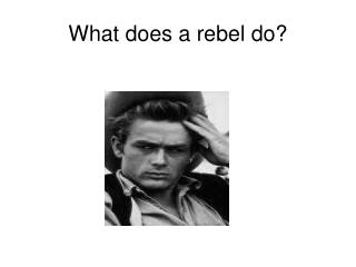 What does a rebel do?