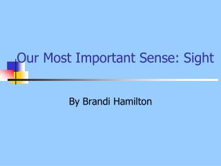 Our Most Important Sense: Sight