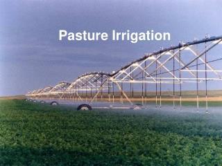 Pasture Irrigation