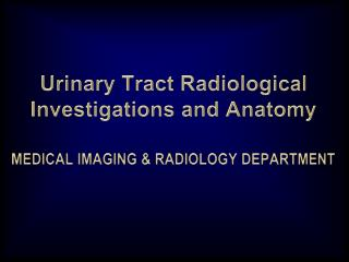 Urinary Tract Radiological Investigations and Anatomy