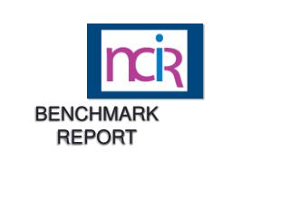 BENCHMARK REPORT