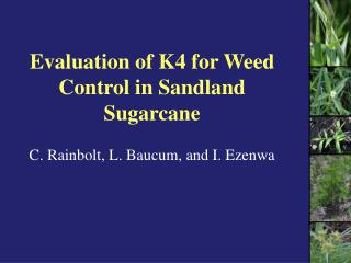 Evaluation of K4 for Weed Control in Sandland Sugarcane