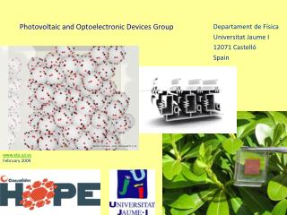 Photovoltaic and Optoelectronic Devices Group
