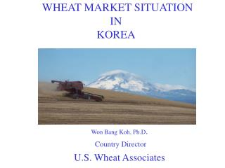 WHEAT MARKET SITUATION IN KOREA