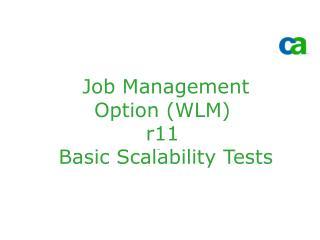 Job Management Option (WLM) r11  Basic Scalability Tests