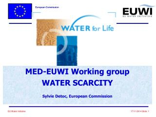 MED-EUWI Working group WATER SCARCITY Sylvie Detoc, European Commission
