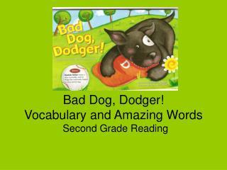 Bad Dog, Dodger! Vocabulary and Amazing Words