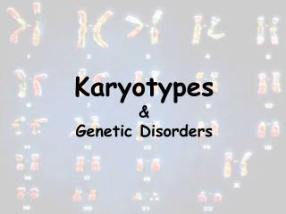 Karyotypes & Genetic Disorders