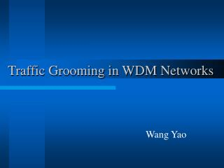 Traffic Grooming in WDM Networks