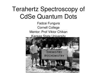 Terahertz Spectroscopy of CdSe Quantum Dots