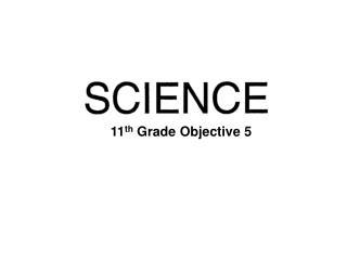 11 th  Grade Objective 5