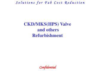 CKD/MKS(HPS) Valve  and others Refurbishment