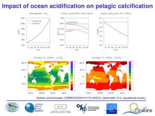 Impact of ocean acidification on pelagic calcification