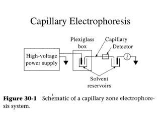 Capillary Electrophoresis
