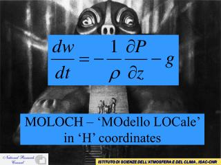 MOLOCH – 'MOdello LOCale' in 'H' coordinates