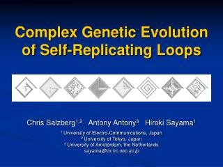 Complex Genetic Evolution of Self-Replicating Loops