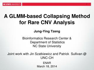 A GLMM-based  Collapsing  Method for Rare  CNV Analysis
