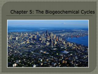 Chapter 5: The Biogeochemical Cycles