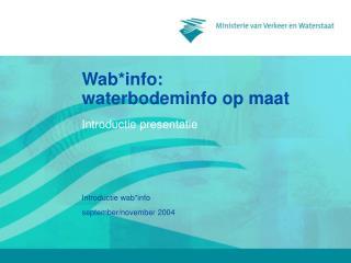 Wab*info:  waterbodeminfo op maat