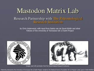 Mastodon Matrix Lab