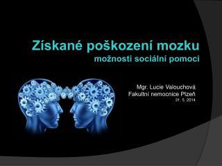 Mgr. Lucie Valouchová Fakultní nemocnice Plzeň 31. 5. 2014
