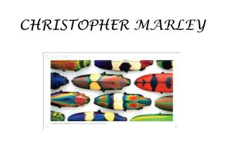 CHRISTOPHER  MARLEY