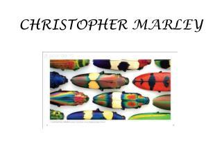 CHRISTOPHER  MARLEY