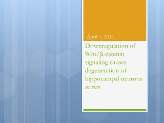 Downregulation of Wnt/?-catenin signaling causes degeneration of hippocampal neurons  in vivo