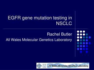 EGFR gene mutation testing in NSCLC