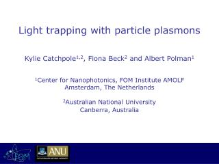Light trapping with particle plasmons