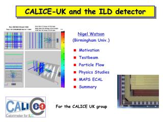 CALICE-UK and the ILD detector
