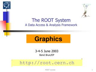 The ROOT System A Data Access & Analysis Framework