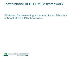 Institutional REDD+ MRV framework