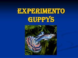 Experimento Guppys