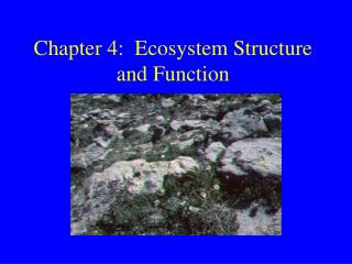 Chapter 4:  Ecosystem Structure and Function