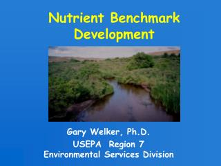 Nutrient Benchmark Development
