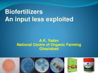 Biofertilizers An input less exploited