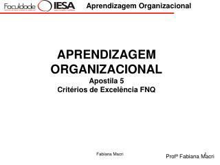 APRENDIZAGEM ORGANIZACIONAL Apostila 5 Critérios de Excelência FNQ