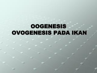 OOGENESIS   OVOGENESIS PADA IKAN