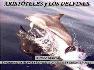 ARISTÓTELES y LOS DELFINES