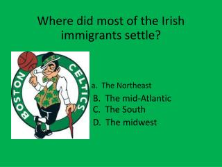 Where did most of the Irish immigrants settle?