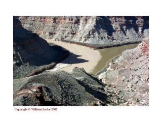 Lec 11:  Stream Ecology- Abiotic Features