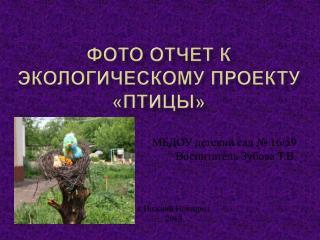 Фото отчет к экологическому проекту «Птицы»