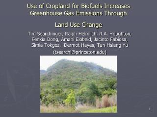 Use of Cropland for Biofuels Increases Greenhouse Gas Emissions Through  Land Use Change