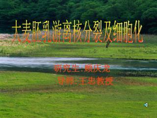 研究生 : 顾庆龙   导师 : 王忠教授