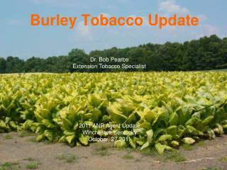 Burley Tobacco Update
