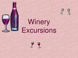 Winery Excursions